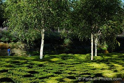 andre citroen park, paris