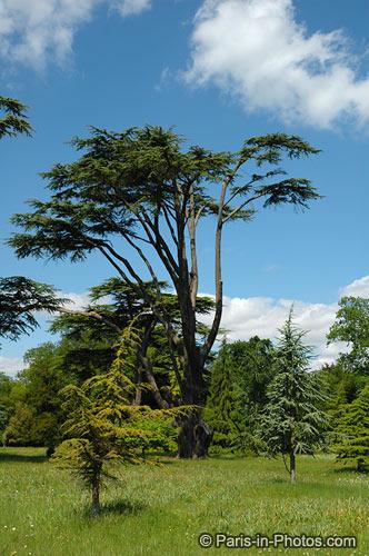 ickworth gardens, ickworth house, suffolk national trust