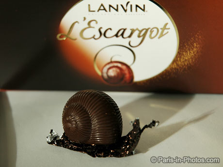 chocolate snails, escargot, france