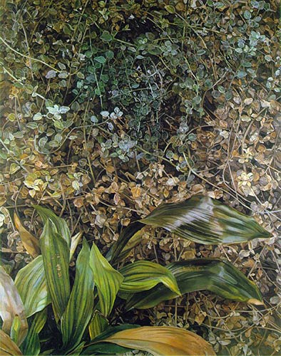 two plants, lucian freud, pompidou paris