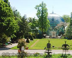 Jardin des serres d 39 auteuil paris botanical gardens for Jardin botanique paris